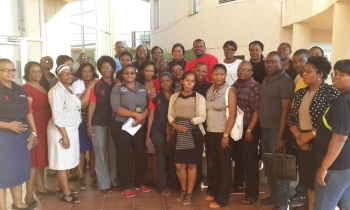 Debswana Wellness Peer Mentor Training